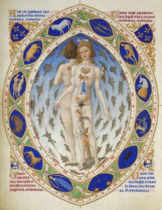 L'Homme anatomique ou L'Homme zodiacal, illustration from 1411. Museum Cond`ee.